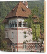 Romanian Villa Wood Print
