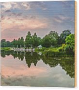 Romantic Pond In Park In Hamburg Wood Print