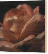 Romantic September Rose Wood Print