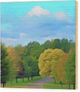 Romantic Skies Autumn Road Wood Print