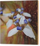 Romantic Textured Island Lilies  Wood Print