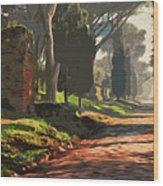 Rome, Appian Way - 05 Wood Print
