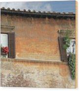 Rome Windows Wood Print