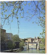 Rome's River Wood Print