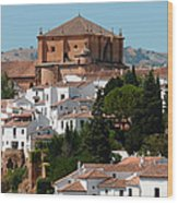 Ronda. Andalusia. Spain Wood Print by Jenny Rainbow