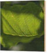 Rontgen Wood Print