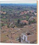 Rooftops Of Siena Wood Print