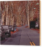Roosevelt Avenue Red Wood Print