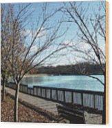 Roosevelt Lake Promenade Wood Print