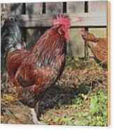 Rooster And Friend Wood Print