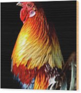 Rooster Portrait Wood Print