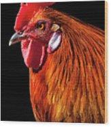 Rooster Pride Wood Print