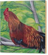 Roosting Wood Print