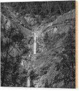 Root Creek Falls Wood Print