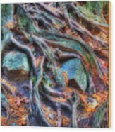 Roots And Rocks Wood Print by Naman Imagery