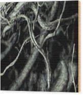 Roots Series #1 Wood Print