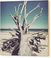 Roots To The Sky-vintage Wood Print by Chris Andruskiewicz