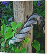 Rope And Vine Wood Print