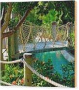 Rope Bridge Wood Print