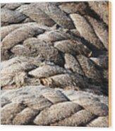 Ropes. Wood Print