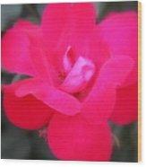 Rosa Roja Wood Print