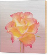 Rosalie Wood Print