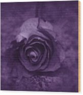 Rose - Purple Wood Print