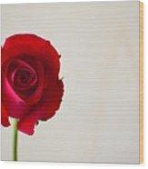 Rose #022 Wood Print