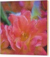 Rose 337 Wood Print
