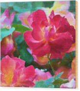 Rose 354 Wood Print
