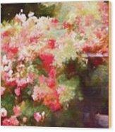 Rose 375 Wood Print