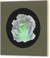 Rose 8-4 Wood Print