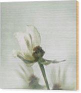 Rose Abstract Wood Print