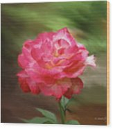 Rose Alone Wood Print