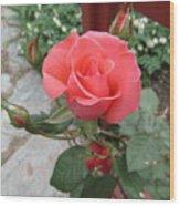Rose America Wood Print