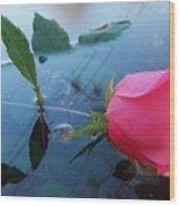 Rose And Water. Wood Print