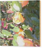 Rose Art Wood Print
