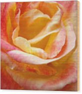 Rose Art Pink Yellow Summer Rose Floral Baslee Troutman Wood Print
