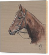 Rose At The Morgan Horse Ranch Prns Wood Print