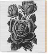 Rose Black Wood Print