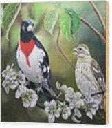 Rose Breasted Grosbeaks Wood Print