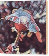 Rose Bud Frozen In Time  Wood Print