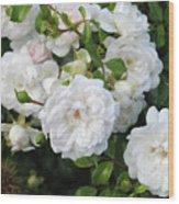 Rose Bush Wood Print