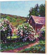 Rose Bushes Wood Print