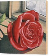 Rose By A Window Wood Print