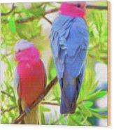 Rose cockatoos Wood Print