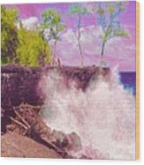 Rose Colored Splash At Mackenzie Wood Print