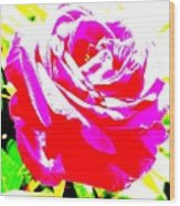 Rose Wood Print by Dana Patterson
