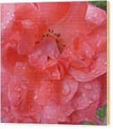 Rose Drops Wood Print