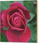 Rose Eye Wood Print